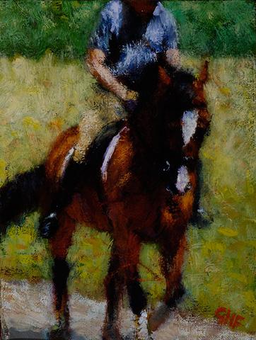 dressage_horse