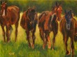 four_warmbloods