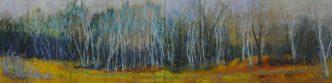1.Birch Line  oil  24″x96″  2012 $2500