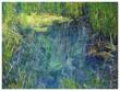 Thompson-Pond-30'x40'_1